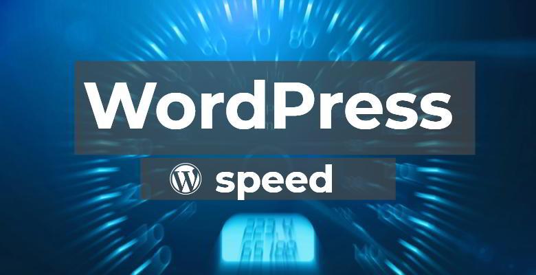 Curso Acelera tu WordPress